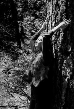 Sage screen shot tree meditation new