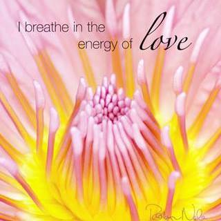 breathe in energy of love ALA flower