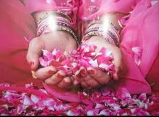 beautiful goddess pink roses