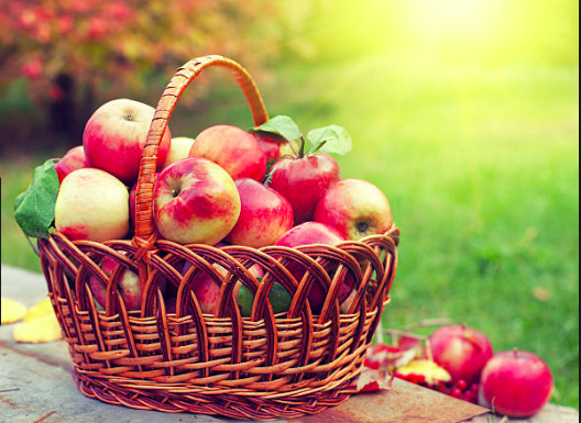 Fall Autumn apples basket harvest
